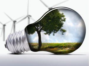 Light bulb with green scene inside
